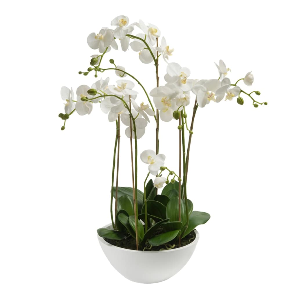 Emerald Umelá orchidea biela 80 cm 20.335C