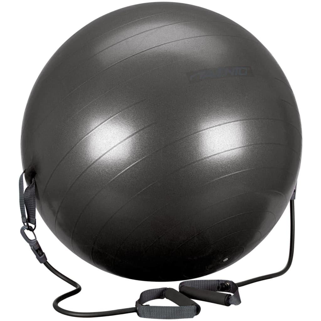 Avento Fitness lopta s popruhmi 65 cm čierna 41TO-ZWG-65