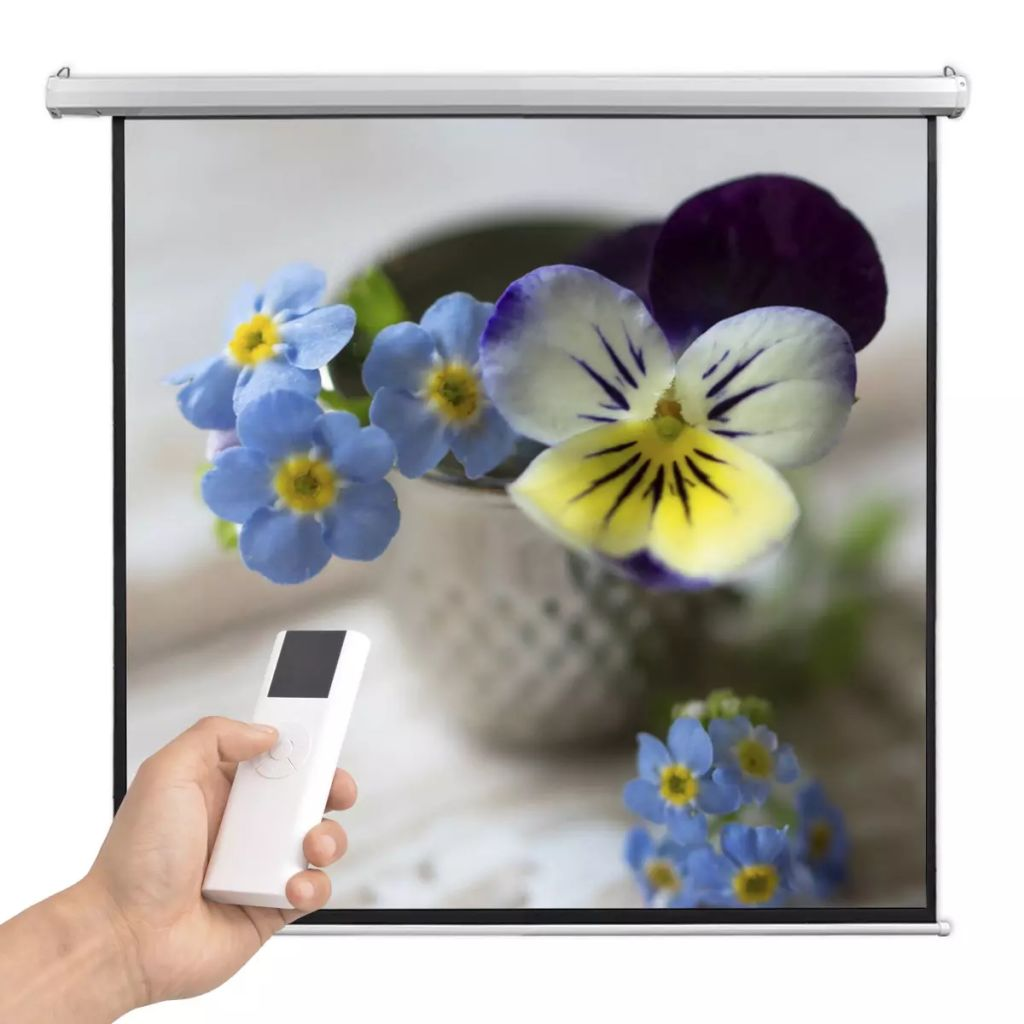 vidaXL Elektrické projekčné plátno s diaľkovým ovládaním, 160x160 cm, 1:1
